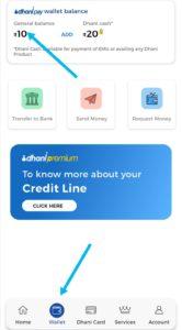 Dhani pay wallet balance
