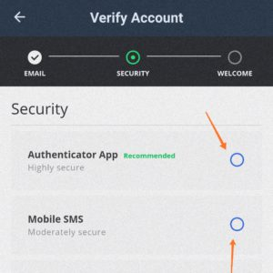 security pattern for the Wazirx app